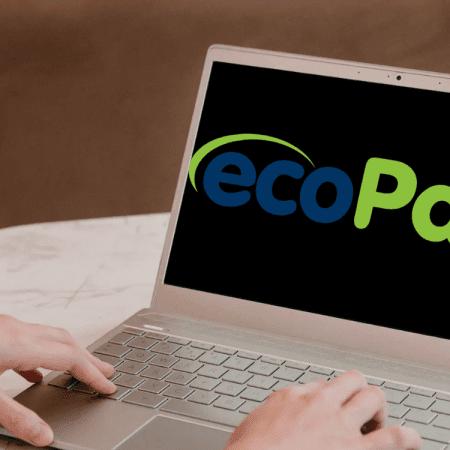 Ecopayz med DNB – 4 tips og erfaringer